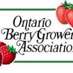 OBGA Logo